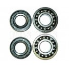 Engine Bearings and Seals, CAG, 47cc-49cc